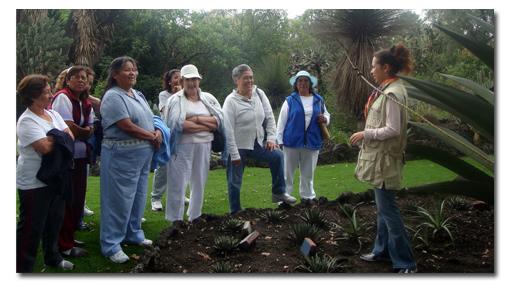 De la escuela al jard n bot nico for Jardin botanico unam 2015