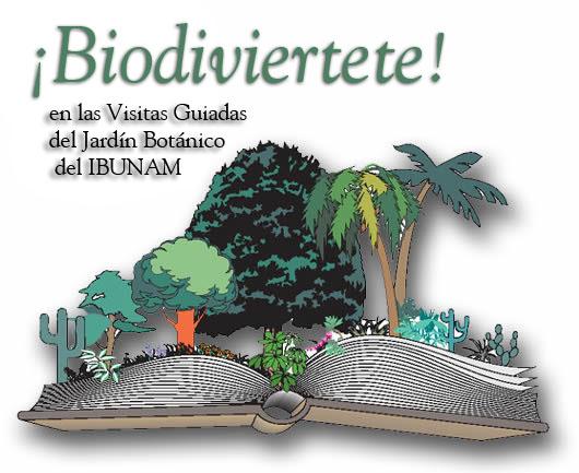 Programa Jardin botanico de la unam