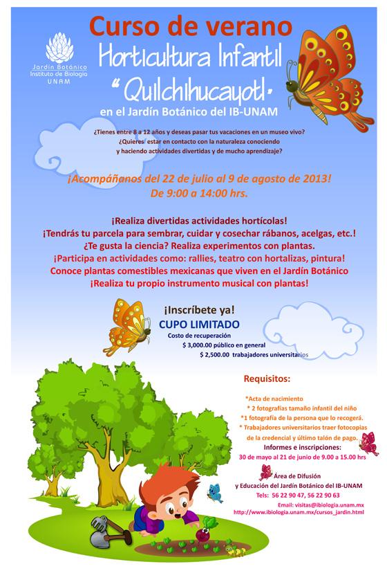 Unam cursos y talleres del jard n bot nico for Jardin botanico cursos