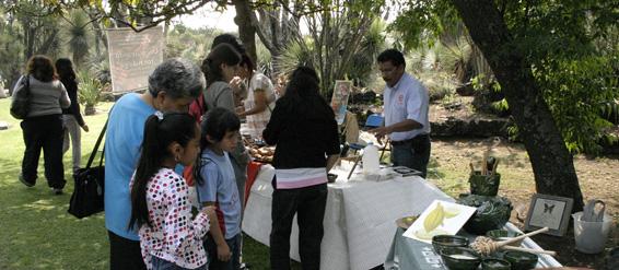 Unam programa educativo de la tienda tigridia del jard n for Jardin botanico conciertos